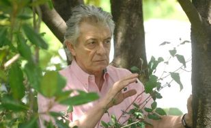 Умберто Серрано фото