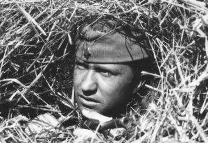 Андрей Троицкий актеры фото биография