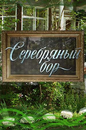 Серебряный бор актеры и роли
