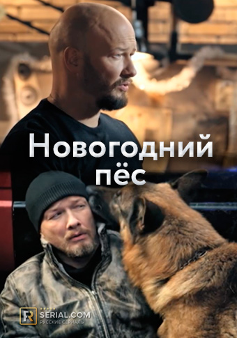 Новогодний пёс